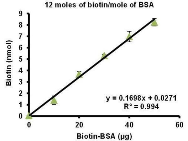 Biotinylated Bovine Serum Albumin (Biotin-LC-BSA) (12 ...