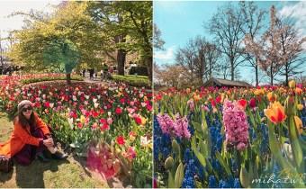荷蘭鬱金香花季》荷比盧深度賞花行程這樣玩!10天荷蘭比利時盧森堡行程