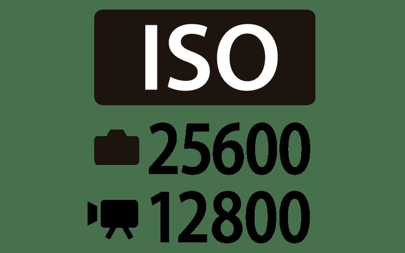 Canon EOS 90D Maximum ISO 25,600