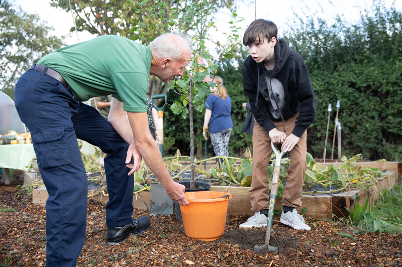 Plant a tree this National Tree Week
