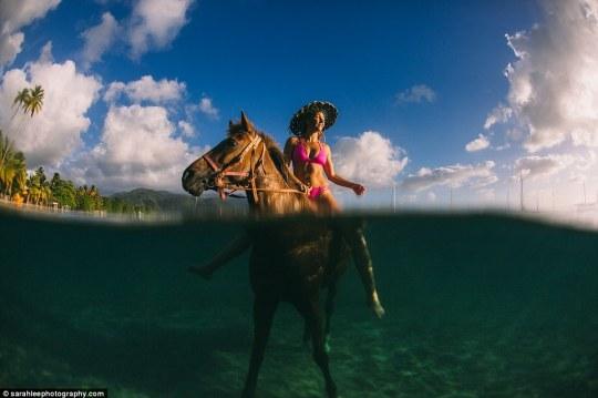 ReDiscover Dominica Campaign