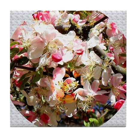 What spring does to cherry trees Tile Coaster