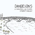 Dandelions | A Harvard Law School Podcast