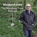 Woodland Walks   The Woodland Trust Podcast
