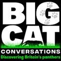 Big Cat Conversations
