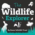 The Wildlife Explorer