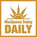 Marijuana Today Daily