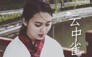云中雀 刘兰芝视角  剪辑 2016.10