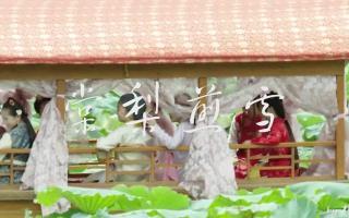 【小戏骨红楼梦】棠梨煎雪—人物群像混剪