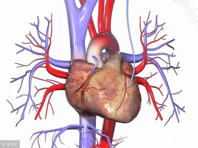 小康說藥:冠心舒通膠囊能用於心絞痛的治療嗎? - 每日頭條