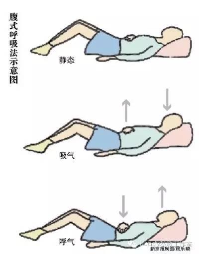 你為什麼必須學習橫膈膜呼吸法 - 每日頭條