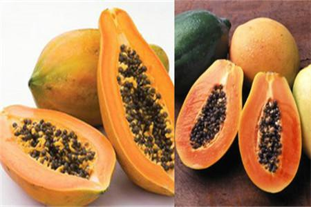 木瓜籽能吃嗎 對人體有什麼好處 - 每日頭條