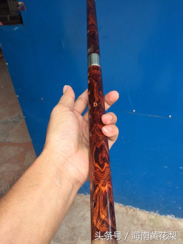 「玉人執橫笛,吹落滿天花」——中國最美海黃笛子! - 每日頭條