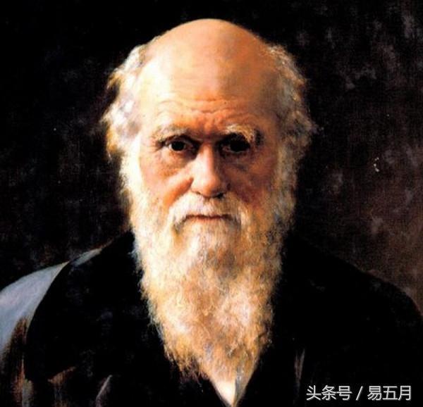 你要質疑進化論?拿什麼證據質疑進化論? - 每日頭條