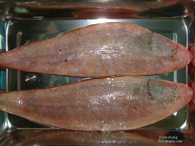 喜歡吃龍利魚嗎?其實你吃的多半是越南鯰魚! - 每日頭條