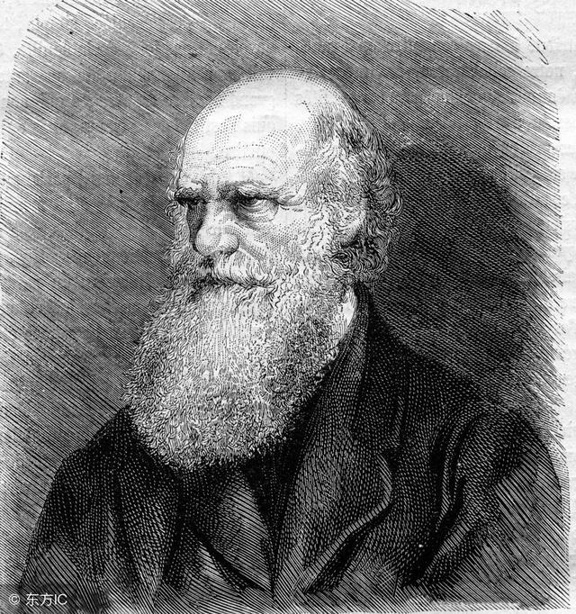 達爾文進化論只是假說?已經被徹底推翻?別被忽悠了! - 每日頭條