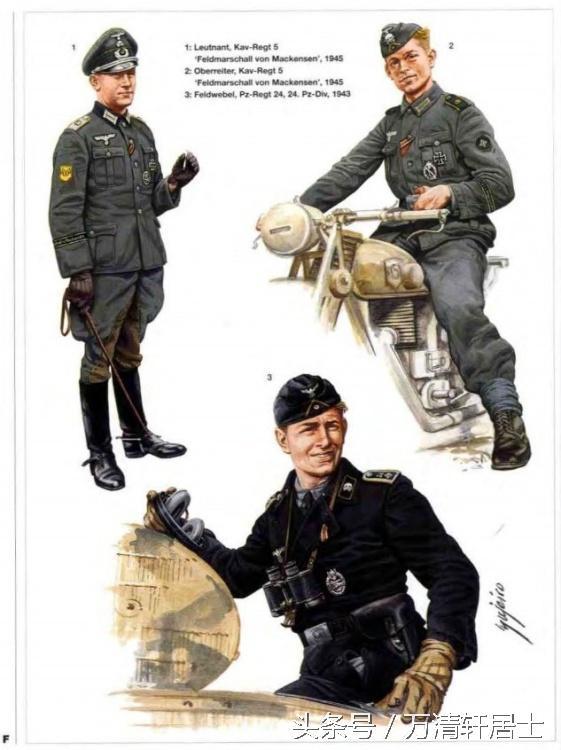 二戰德軍精英部隊:裝甲師和山地師作戰裝備 - 每日頭條