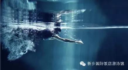 帶你認識潛泳 - 每日頭條