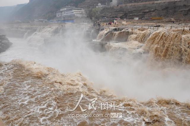 黃河壺口瀑布迎來「桃花汛」 流量比常年偏小 - 每日頭條