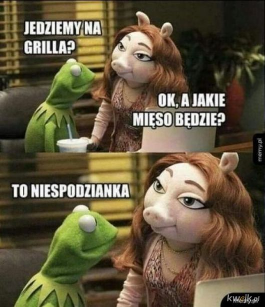 Mieso - Najlepsze memy, zdjęcia, gify i obrazki - KWEJK.pl