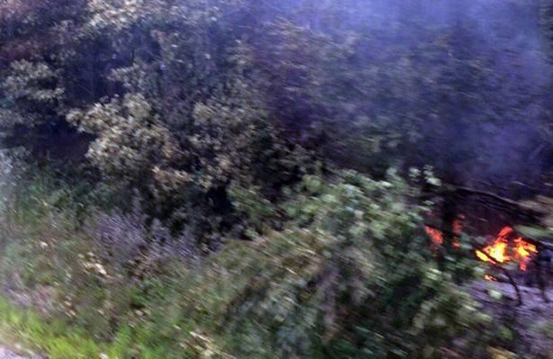 Virginia State Police said six people have died in a small plane crash near Shannon Airport in Fredericksburg.