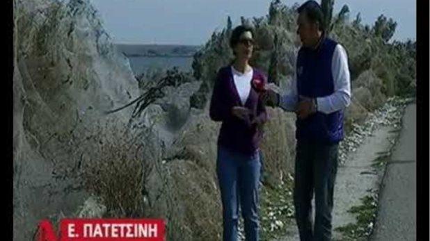 Λίμνη Βιστωνίδα: τεράστιο πέπλο αράχνης