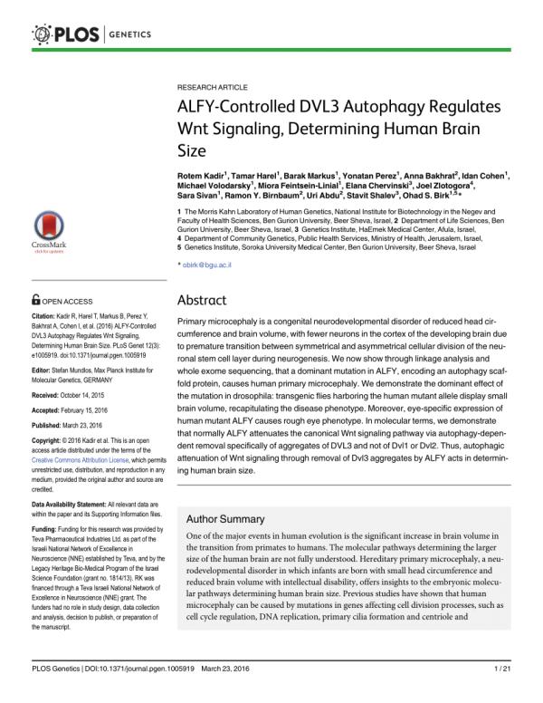 (PDF) ALFY-Controlled DVL3 Autophagy Regulates Wnt ...