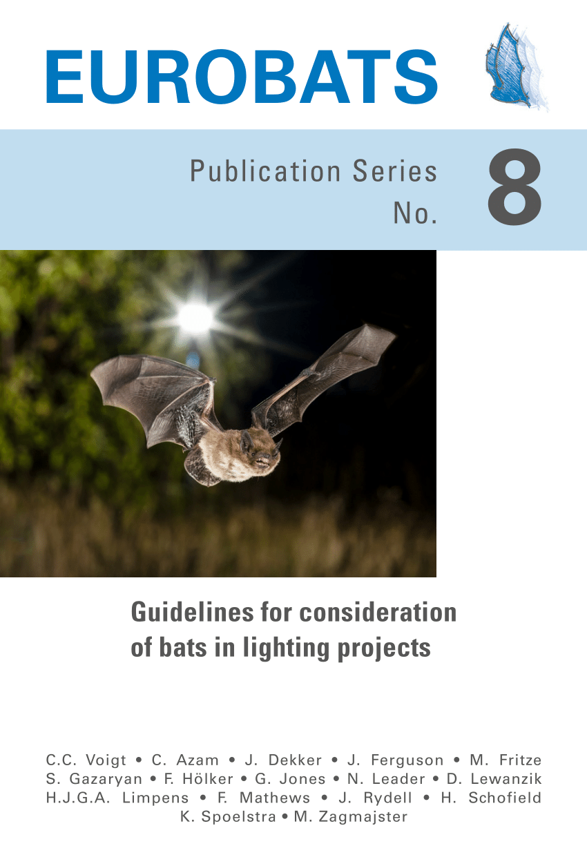 guidelines for consideration of bats in