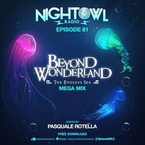 INSOMNIAC RECORDS - Night Owl Radio 081 (Beyond Wonderland ...
