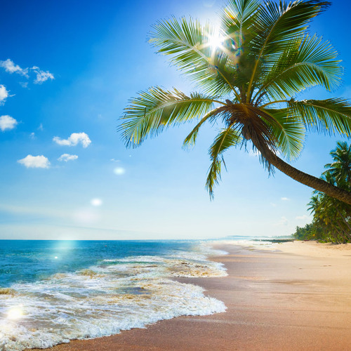 Surfing has its roots firmly in the ocean, but these freshwater versions also have a healthy, albeit smaller, following. Stream Paradise Beach Ocean Waves Sound 75 Minutes By Relaxing White Noise Listen Online For Free On Soundcloud