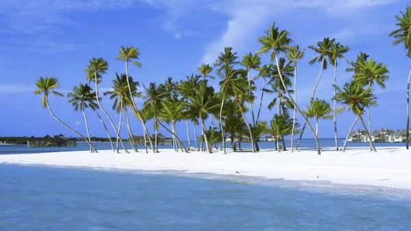 Обои песок, пальмы, остров, пальмы лагуна, sand для ...