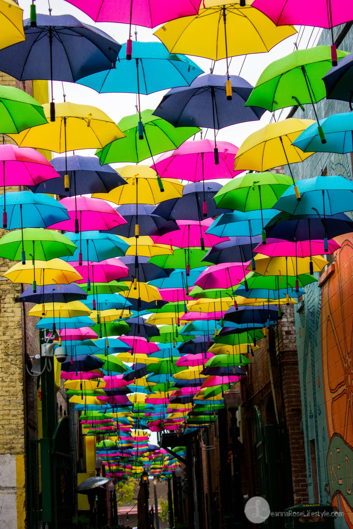 Redlands Umbrella Alley 187 Leanna Rose Lifestyle