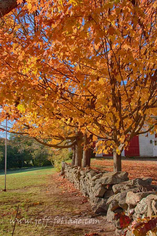 Best Fall Pictures Fond Memories New England Fall Foliage