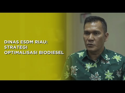 DINAS ESDM RIAU: Strategi Optimalisasi Biodiesel | Sisi+ By Katadata Indonesia