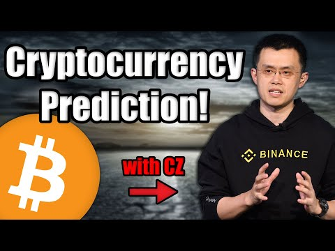 Cryptocurrency Billionaire Reveals Bitcoin and Crypto Predictions 2020 Decade | CZ Binance Interview