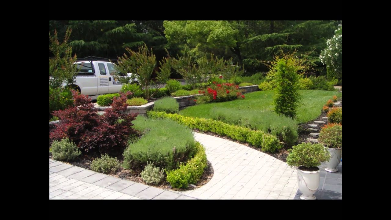 Curb Appeal Ideas? Landscape Ideas? Front Yard Ideas ... on Backyard Lawn Designs  id=47262