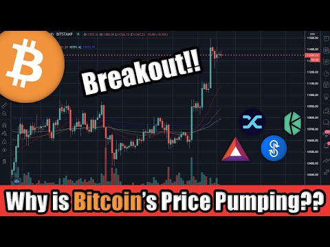 Bitcoin Price BREAKOUT Soaring Above $11,300! Plus, Top 5 Cryptocurrencies Making Moves RIGHT NOW 📈