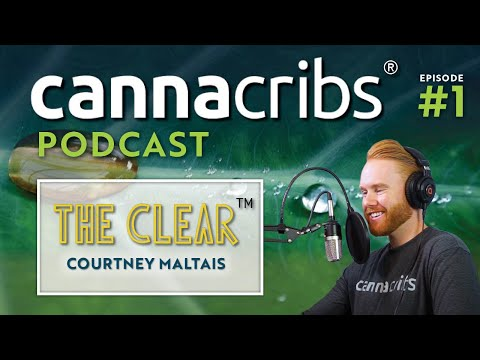The Clear Cannabis Concentrates with Courtney Maltais (Canna Cribs Podcast: Episode 1)