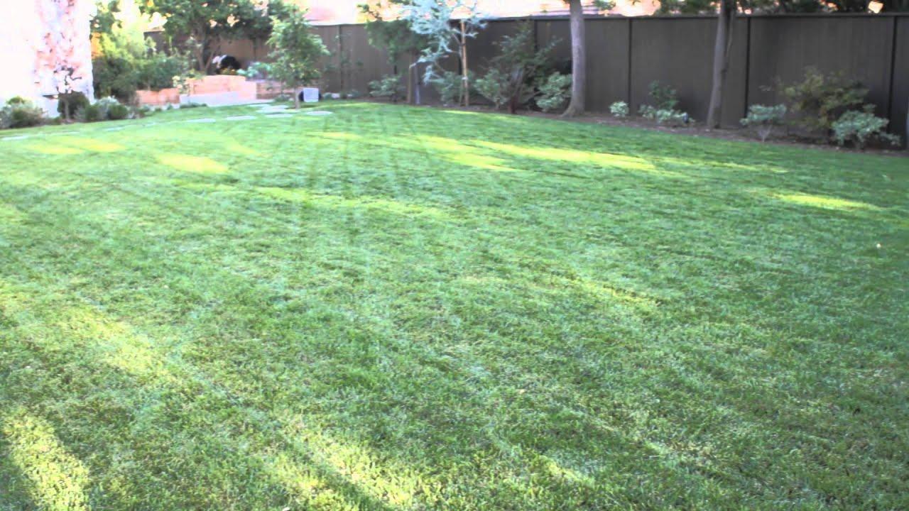 How to Landscape a Big Backyard : Landscaping & Garden ... on Backyard Landscape  id=50700