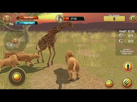 Wild Lion Simulator 3D Android Gameplay #10