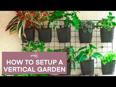 Gobble   How To Make A Vertical Garden At Home   Low Cost Garden   Vertical Gardening