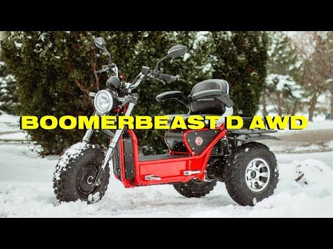 Boomerbeast D AWD! | Dual Motor On-road/Off-road Mobility Scooter
