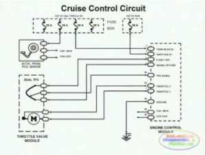 Cruise Control & Wiring Diagram  YouTube