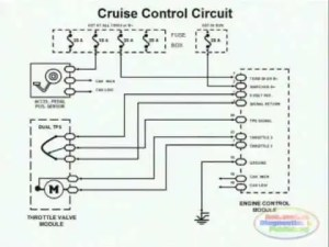 Cruise Control & Wiring Diagram  YouTube