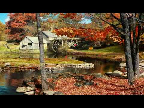 Falling Leaves 3d Screensaver Mp4 Youtube
