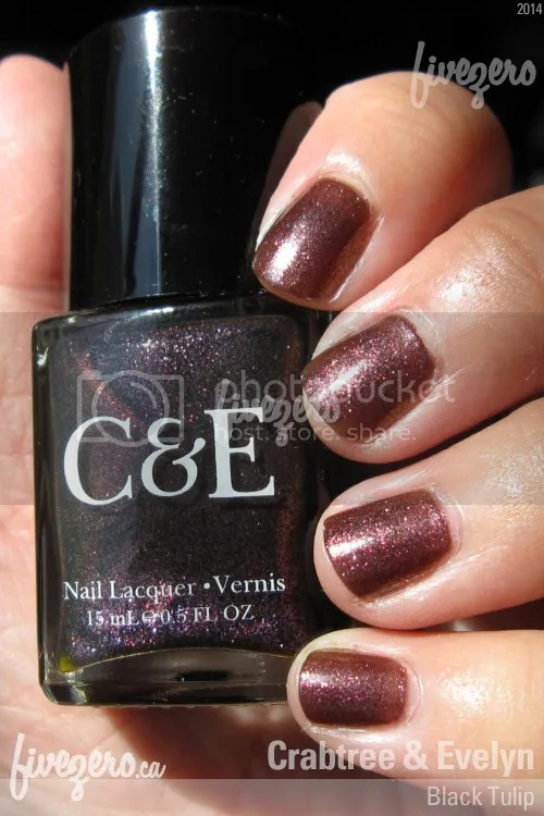 Crabtree and Evelyn Nail Lacquer in Black Tulip, swatch