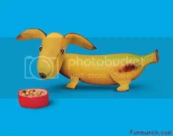 funny_food_pictures_09.jpg nanner image by Jackieferrero