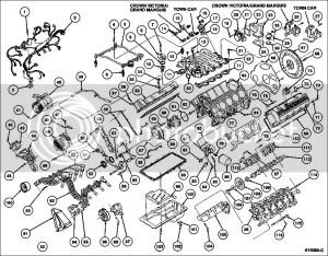 Ford 302 Motor Specs  impremedia