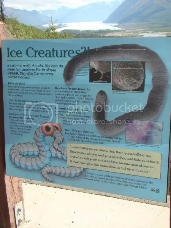Ice Worms