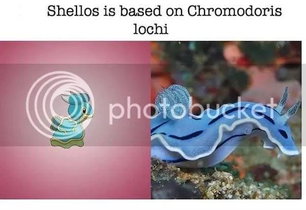 su-tien-hoa-cua-pokemon